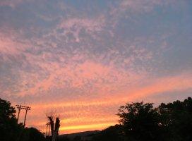 today's sunset…ピンクのぉ空に出会ぇる季節です。…