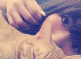 猫はきまぐれでいいなあ〜🐱🐱🐱