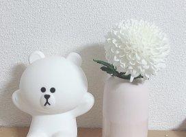 おととい買った花^^癒される〜
