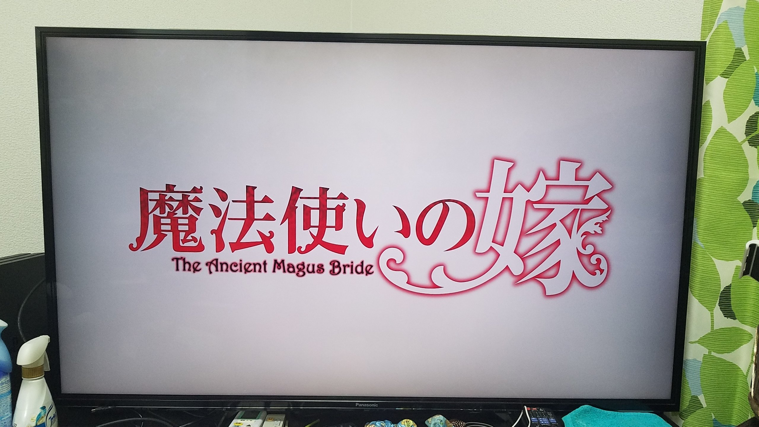 録画してずっと観てなかったアニメ「魔法使いの嫁」なんとなく…