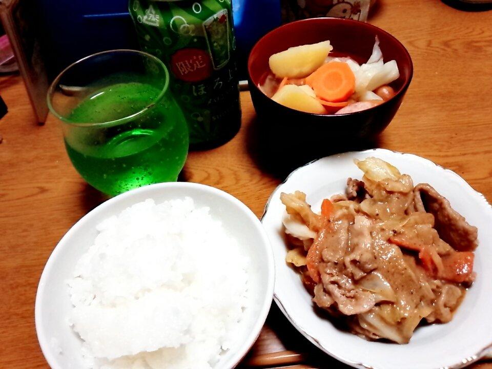 昨日の夜ご飯☆ポトフ作って!!おいしかった!!メロンソーダの…