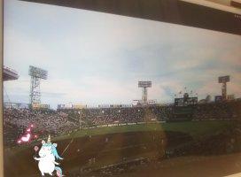 甲子園見ながらゴロゴロ〜_(:3」∠)_今日の試合も熱くて最…