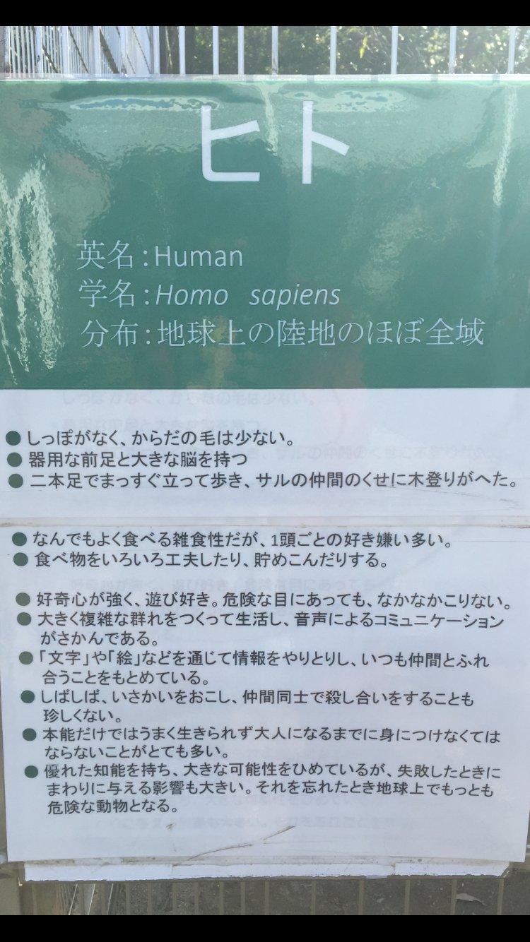 ヒト説明…Σ(゚д゚lll)サルの仲間のくせに木登りがヘタって(笑…