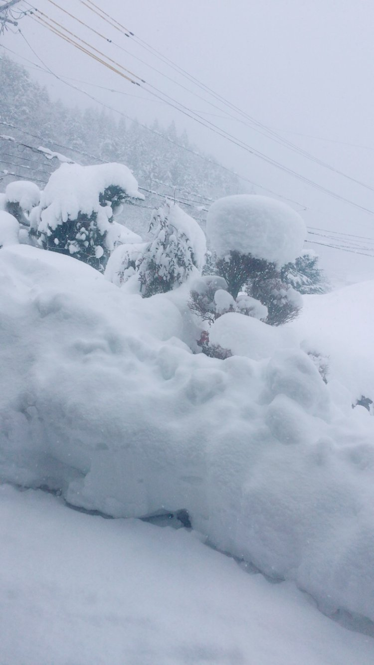 用事でまたも岐阜へ⊂((・⊥・))⊃雪がやばすぎてびっくり!凍って…