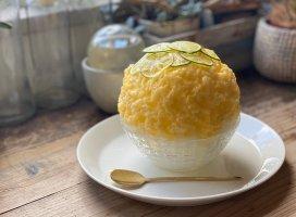 昨日のかき氷部🍧🍧スダチとレモン。外。レモン…