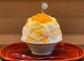 先週奈良に行って食べたかき氷🍧🍧完熟デコポン…