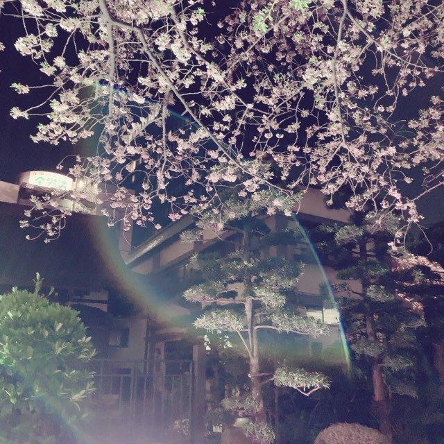 04/07のツイート画像