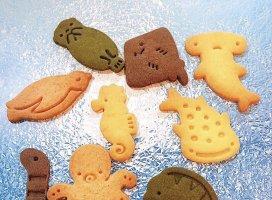 このクッキー、可愛すぎて好き(*^▽^*)💕